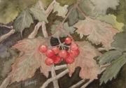 Berries at St. Cross
