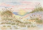 Seaside Splendor