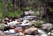 Salmon Creek, Bassetts, CA