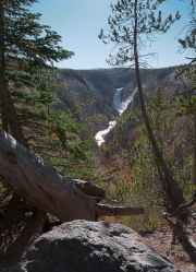 Arstein Yellowstone and Grand Tetons-13