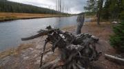 Arstein Yellowstone and Grand Tetons-16