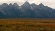 Arstein Yellowstone and Grand Tetons-26