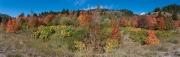 Arstein Yellowstone and Grand Tetons-27
