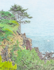 Which Way is Up - Oregon Coastline