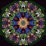 Hundred-Earring Journey Mandala